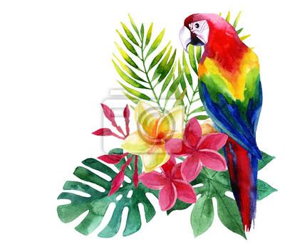 Akwarela papug egzotycznych kwiatów i liści