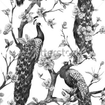 Obraz akwarela, wzór z pawi na drzewie wiśni, kwitnące drzewa, czarno-biały wzór