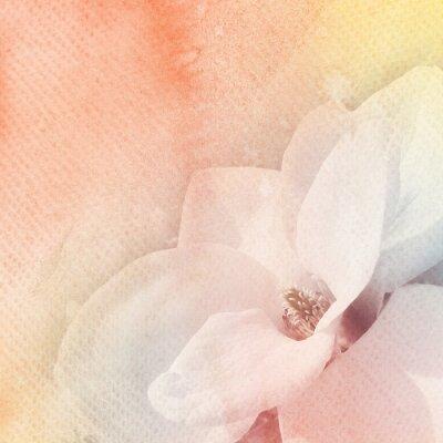 Obraz Akwarele i kwiaty abstrakcyjne tło