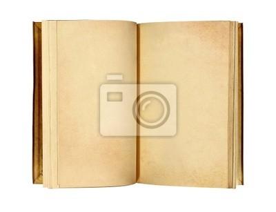 ancient otwarta książka z pustych stron