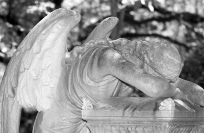 Obraz Anioł w rano, zbliżenie