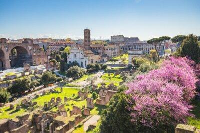 Obraz Antena widok z Forum Romanum w Rzymie, Włochy