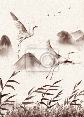 Archiwalne pocztówki z pływające bociany