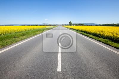 Obraz Asfaltu drogowego w polu letnim