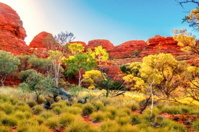 Obraz Australia Outback