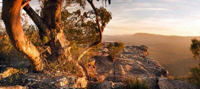 Obraz Australijska Bush Krajobraz