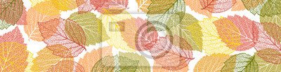 Obraz Autumn  background with leaves. Nature banner. Frame with plants. Bright template