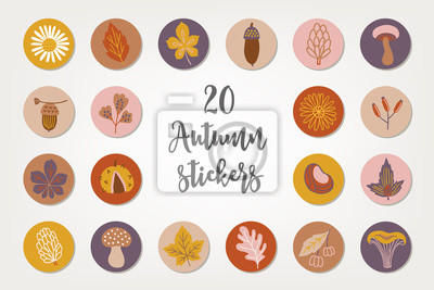 Autumn stickers with acorn, chamomile, cone, mushroom, chestnut, berry, branch