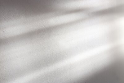 Obraz background of organic shadow over white textured wall