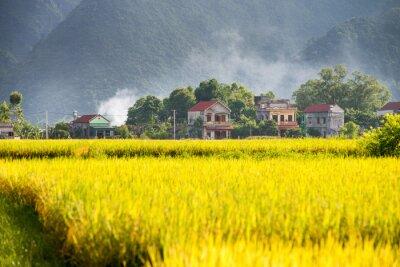 Bacson Valley, Wietnam