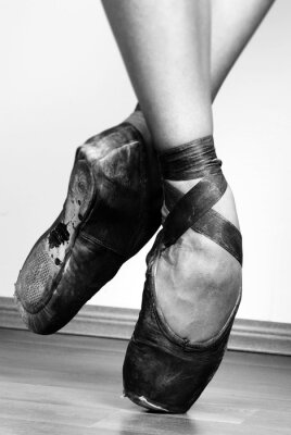 Obraz Ballet Shoes
