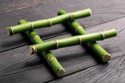 Obraz Bambus macierzystych