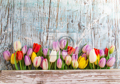 Obraz Beautiful bouquet of tulips on wooden table.