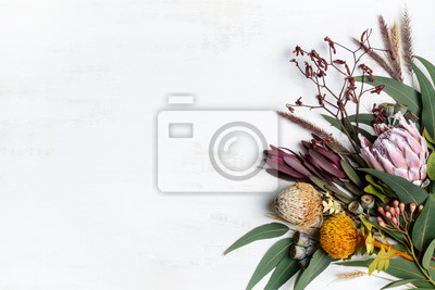Obraz Beautiful flat lay floral arrangement of Australian native flowers, including protea, banksia, kangaroo paw eucalyptus leaves and gum nuts on a white background.