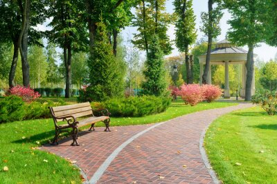 Obraz Beautiful park with bench