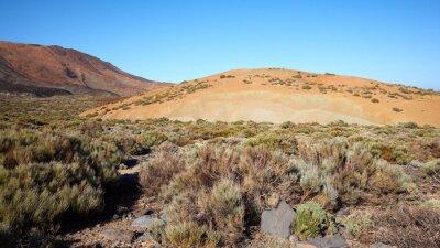 Beautiful scenery of Teide National Park, Tenerife, Spain.