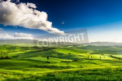 Obraz Beautiful view of the green valley at sunset, Tuscany