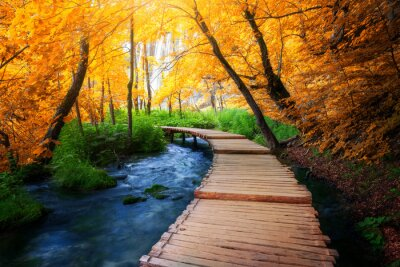 Obraz Beautiful wooden path trail for nature trekking with lakes and waterfall landscape in Plitvice Lakes National Park, UNESCO natural world heritage and famous travel destination of Croatia.