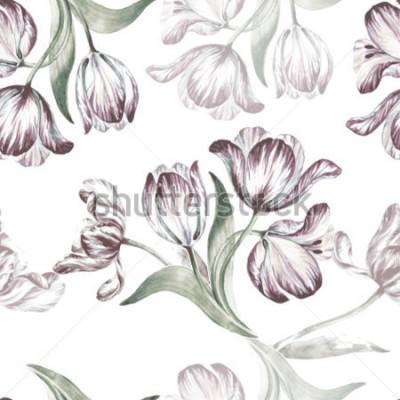 Obraz Bezszwowy kwiecisty wzór na białym tle. Tło wektor akwarela. Piękny tulipan