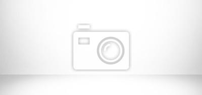 Obraz białe i szare tło studio