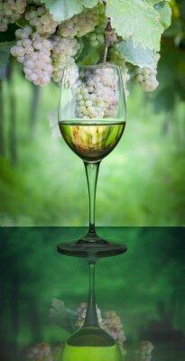 Obraz Białe wino i winogron odbicie wewnątrz