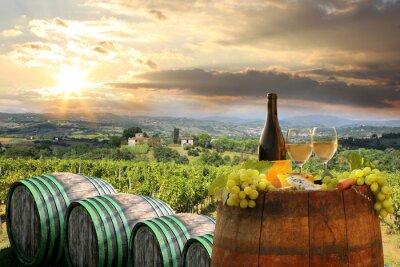 Obraz Białe wino z Barell w winnicy, Chianti, Toskania, Włochy