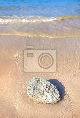 Biały koral na plaży, natura pionowe tle.
