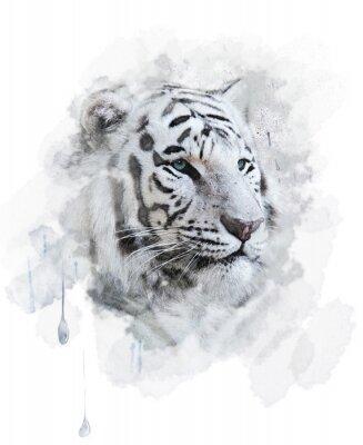 Obraz Biały tygrys