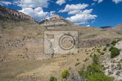 Bighorn National Forest w stanie Wyoming, USA