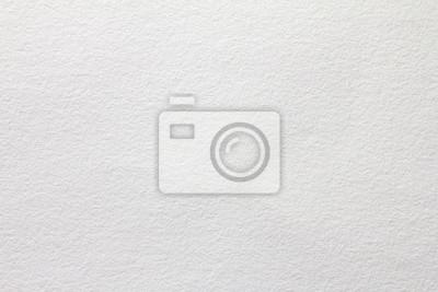 Obraz bliska biały papier akwarelowy tekstury tła