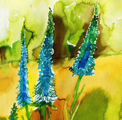 Obraz blue spring flowers in the meadow