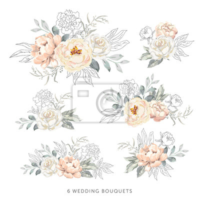 Obraz Blush roses, peonies with gray, outline leaves bouquets, white background. Set of the bridal floral arrangements. Vector illustration. Romantic garden flowers. Wedding design clip art