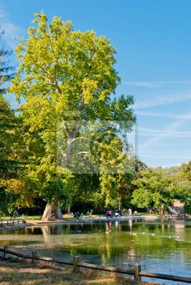 Bois de Boulogne park, Paris