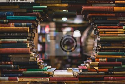 Obraz books in the library