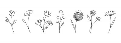 Obraz Botanical linear flower set. Abstract creative floral collection, minimalist flowery art for print, tattoo. Vector illustration