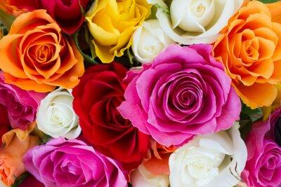 Obraz bouquet of fresh roses