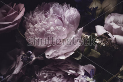 Obraz bouquet of pink peonies, dark background.