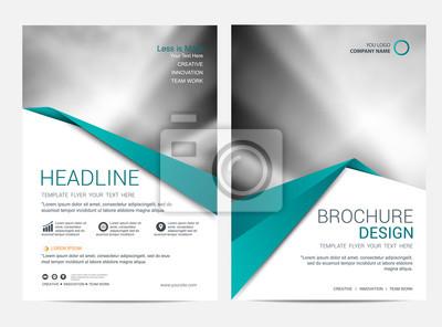 Obraz Brochure template flyer design vector background