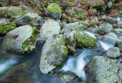 Obraz Brook i duże skały z mchu