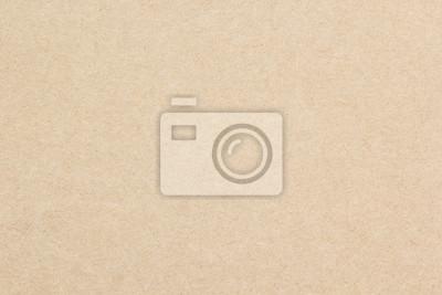 Obraz Brown paper texture background