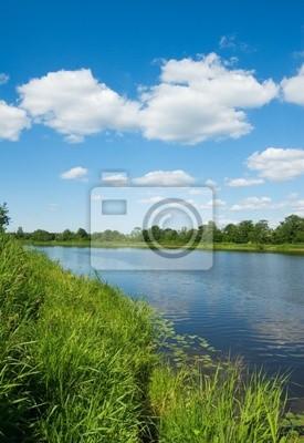 brzeg rzeki, zielona trawa i błękitne niebo