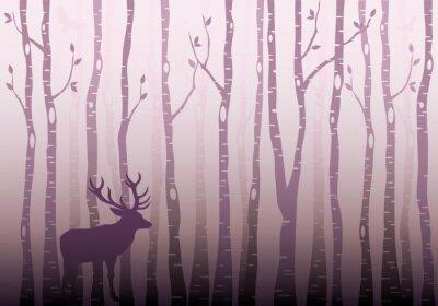 Obraz Brzozowy las drzewo, wektor