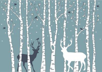 Obraz brzozy z jelenie, wektor tle