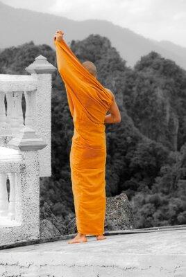 Obraz Budhist mnich
