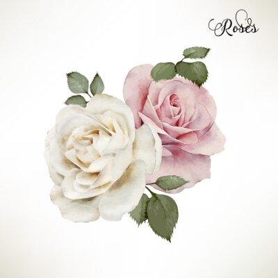 Obraz Bukiet róż, akwareli, może być używany jako karty z pozdrowieniami, Invi
