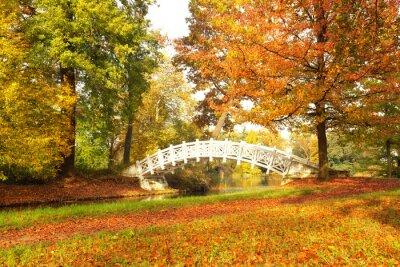 Obraz bunter  Oktober Tag im Park