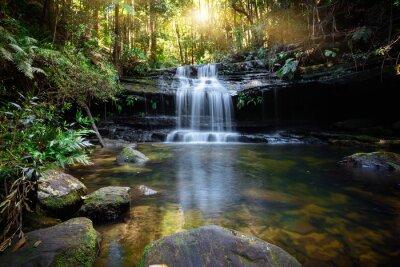 Obraz Bushland waterfall and oasis