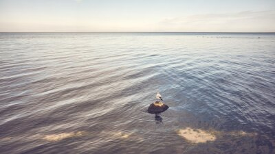 Calm seascape with a bird on a stone, color toning applied.