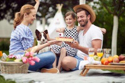 Obraz Celebration on a family picnic on a beautiful day