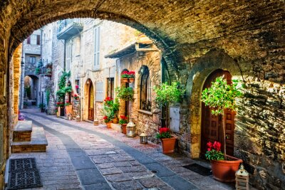 Charming old medieval villages of Italy with typical floral narrow streets. Assisi , Umbria